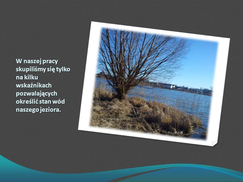 W naszej pracy skupiliśmy się tylko na kilku wskaźnikach pozwalających określić stan wód naszego jeziora.