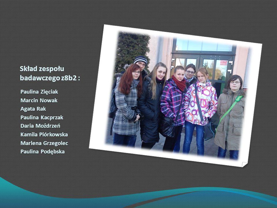 Skład zespołu badawczego z8b2 :