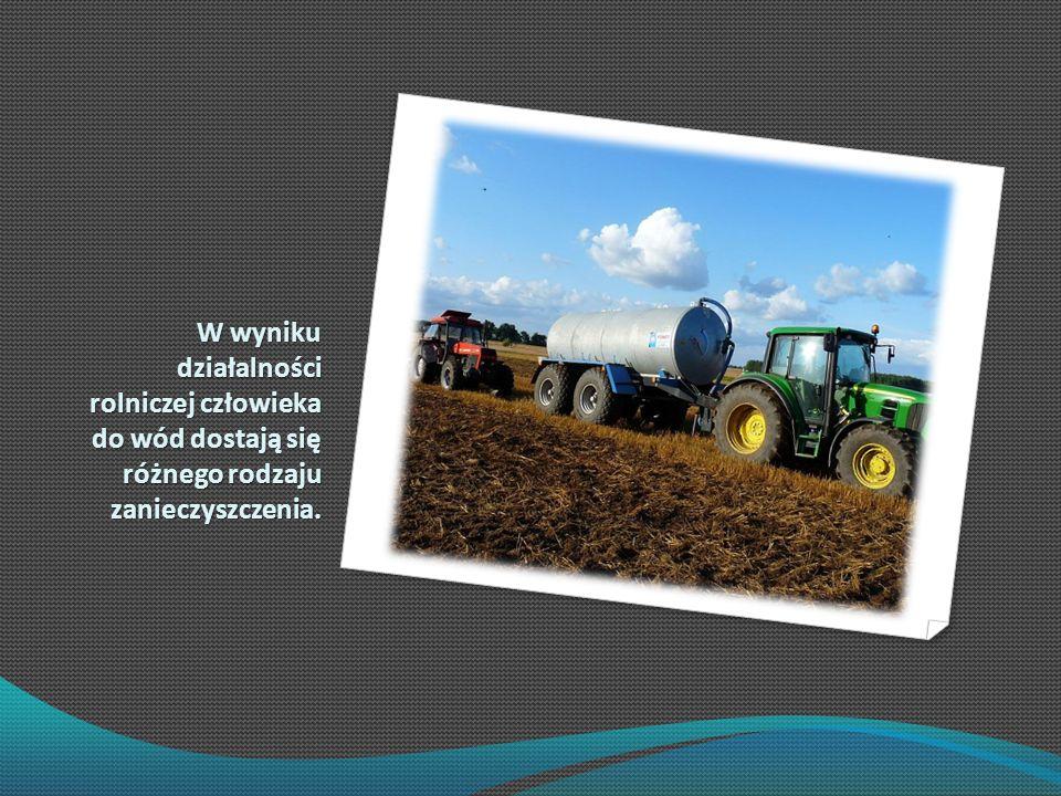 W wyniku działalności rolniczej człowieka do wód dostają się różnego rodzaju zanieczyszczenia.