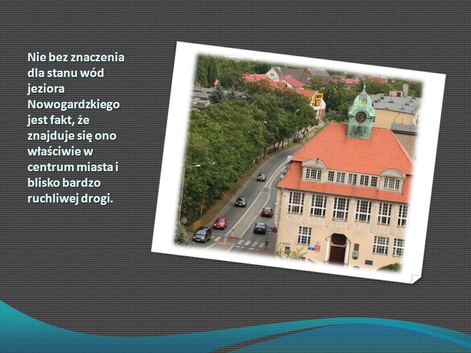 Nie bez znaczenia dla stanu wód jeziora Nowogardzkiego jest fakt, że znajduje się ono właściwie w centrum miasta i blisko bardzo ruchliwej drogi.