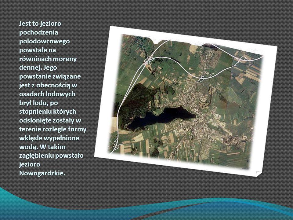 Jest to jezioro pochodzenia polodowcowego powstałe na równinach moreny dennej.