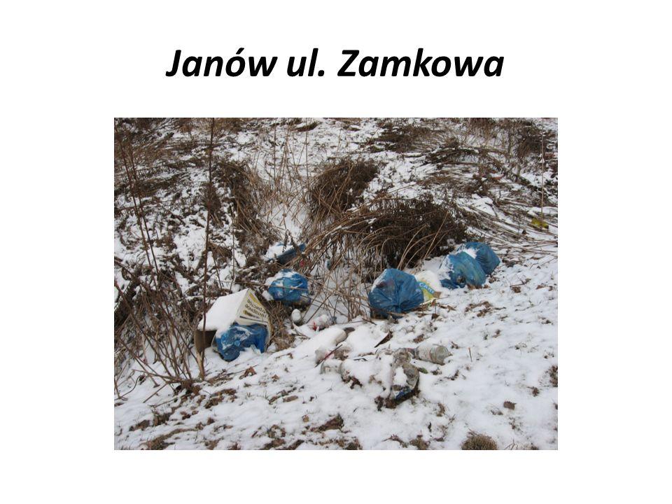 Janów ul. Zamkowa