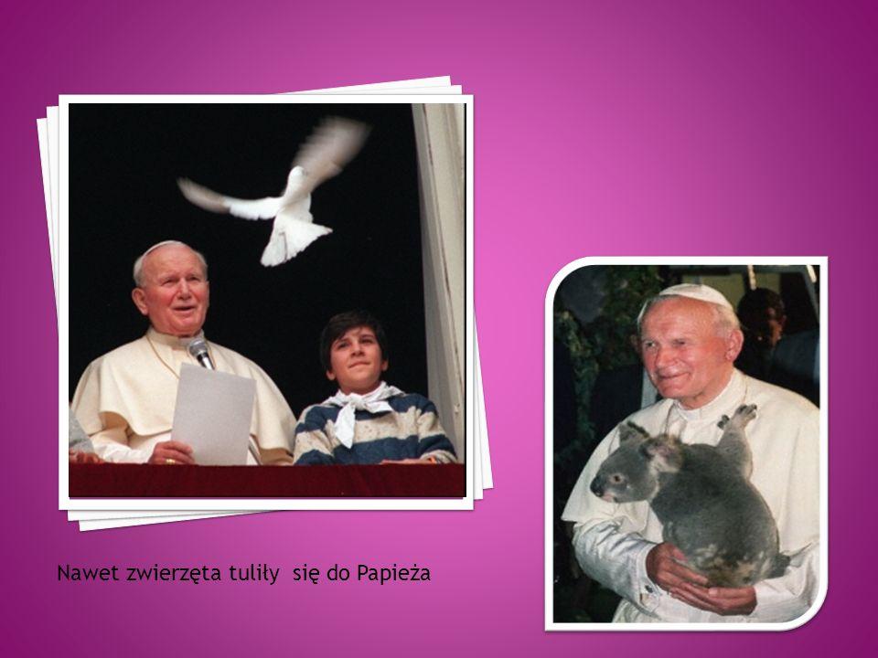 Nawet zwierzęta tuliły się do Papieża