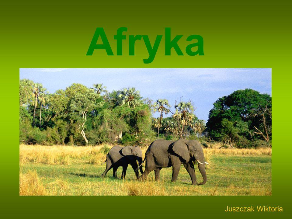 Afryka Juszczak Wiktoria