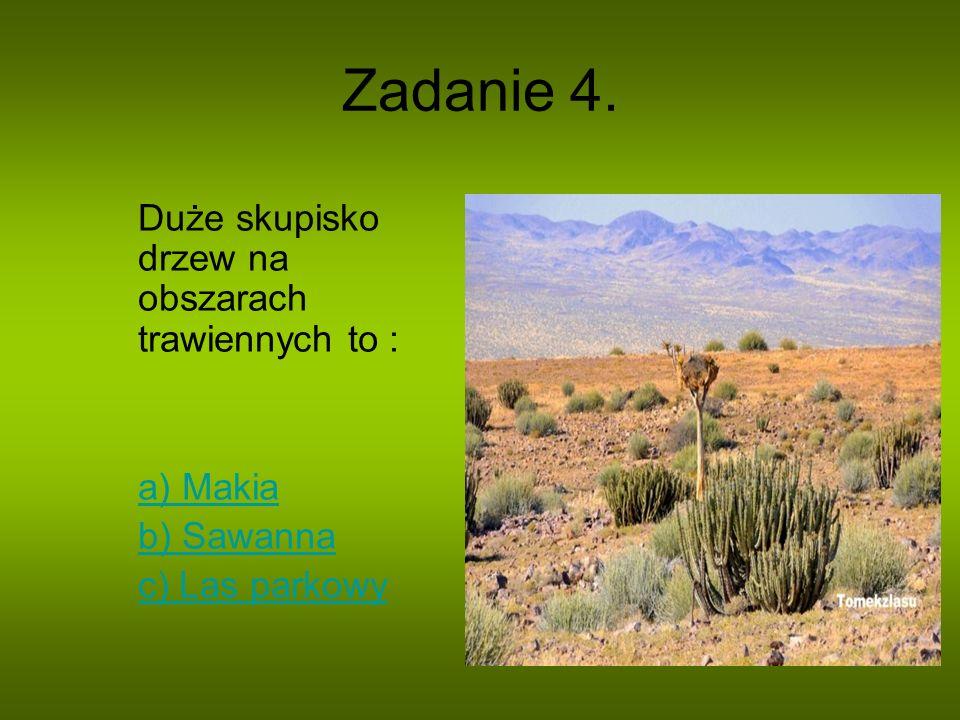 Zadanie 4. Duże skupisko drzew na obszarach trawiennych to : a) Makia