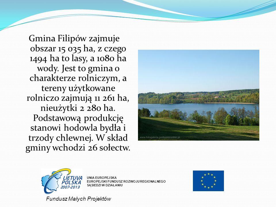 Gmina Filipów zajmuje obszar 15 035 ha, z czego 1494 ha to lasy, a 1080 ha wody. Jest to gmina o charakterze rolniczym, a tereny użytkowane rolniczo zajmują 11 261 ha, nieużytki 2 280 ha. Podstawową produkcję stanowi hodowla bydła i trzody chlewnej. W skład gminy wchodzi 26 sołectw.