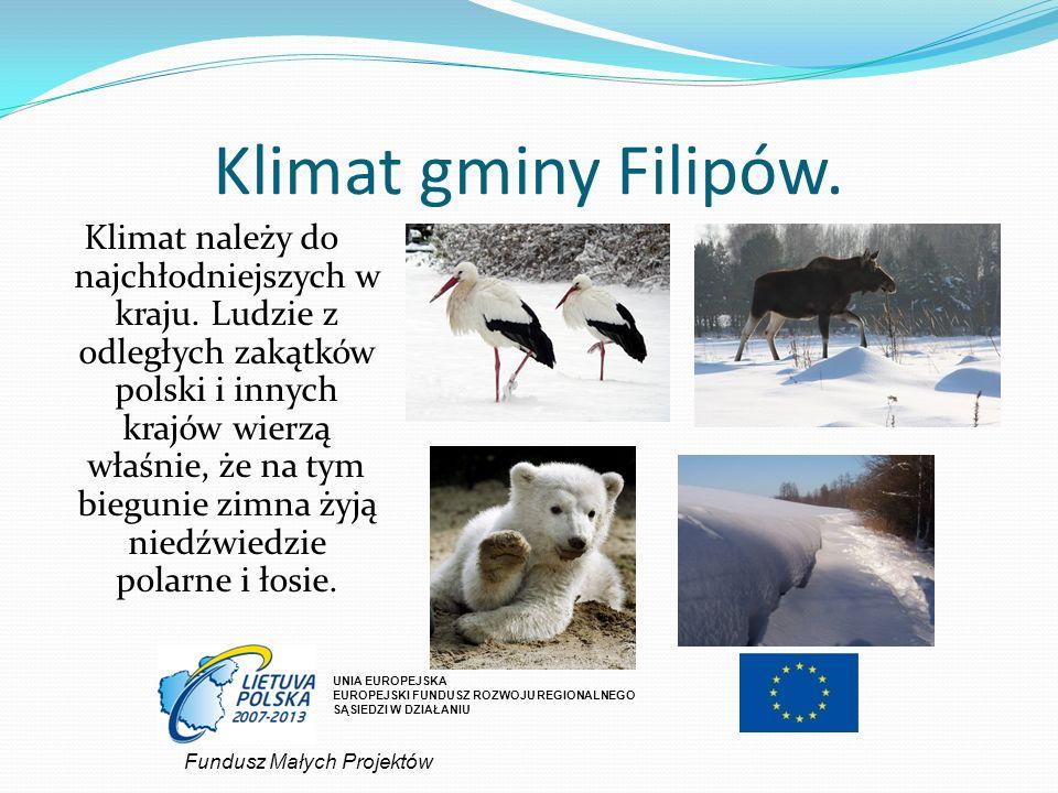 Klimat gminy Filipów.