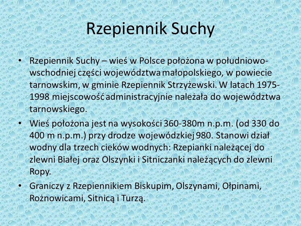 Rzepiennik Suchy