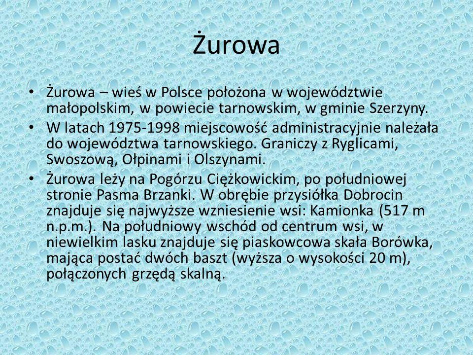 Żurowa Żurowa – wieś w Polsce położona w województwie małopolskim, w powiecie tarnowskim, w gminie Szerzyny.