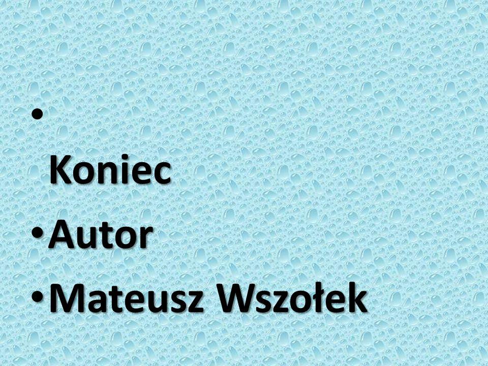 Koniec Autor Mateusz Wszołek