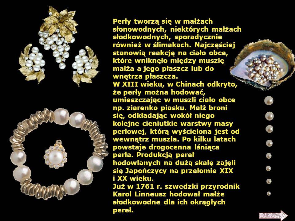 Perły tworzą się w małżach słonowodnych, niektórych małżach słodkowodnych, sporadycznie również w ślimakach. Najczęściej stanowią reakcję na ciało obce, które wniknęło między muszlę małża a jego płaszcz lub do wnętrza płaszcza.