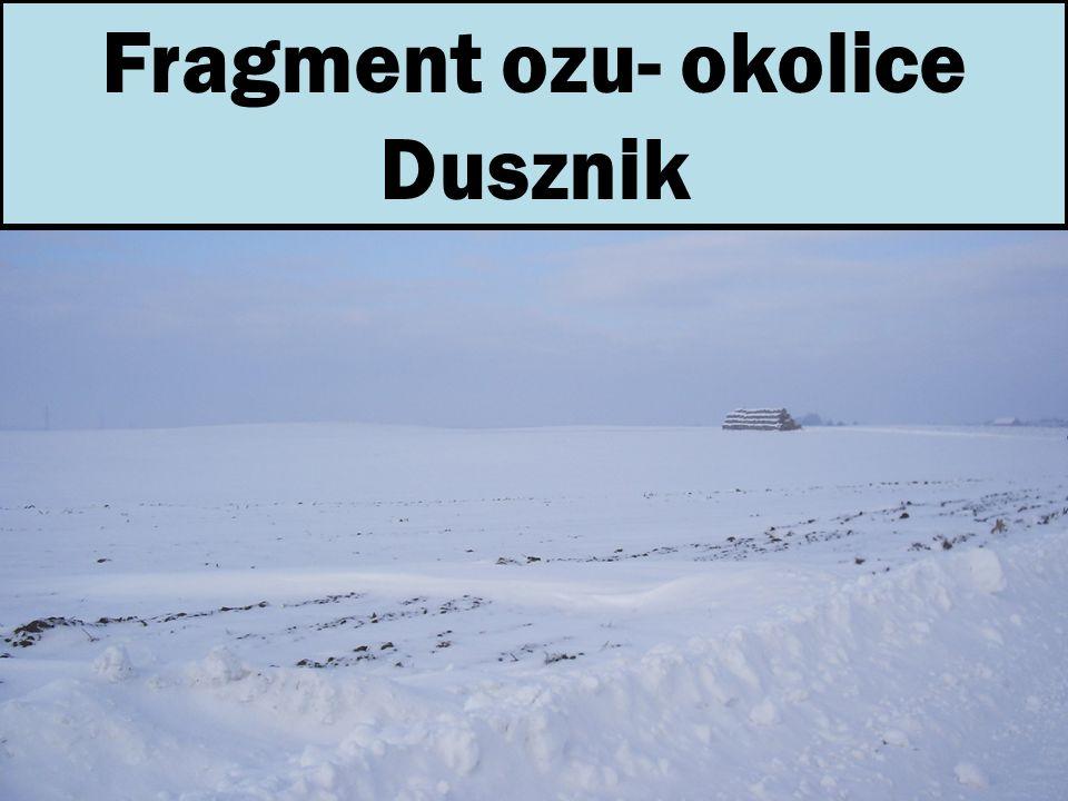Fragment ozu- okolice Dusznik