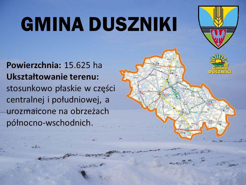 GMINA DUSZNIKI Powierzchnia: 15.625 ha