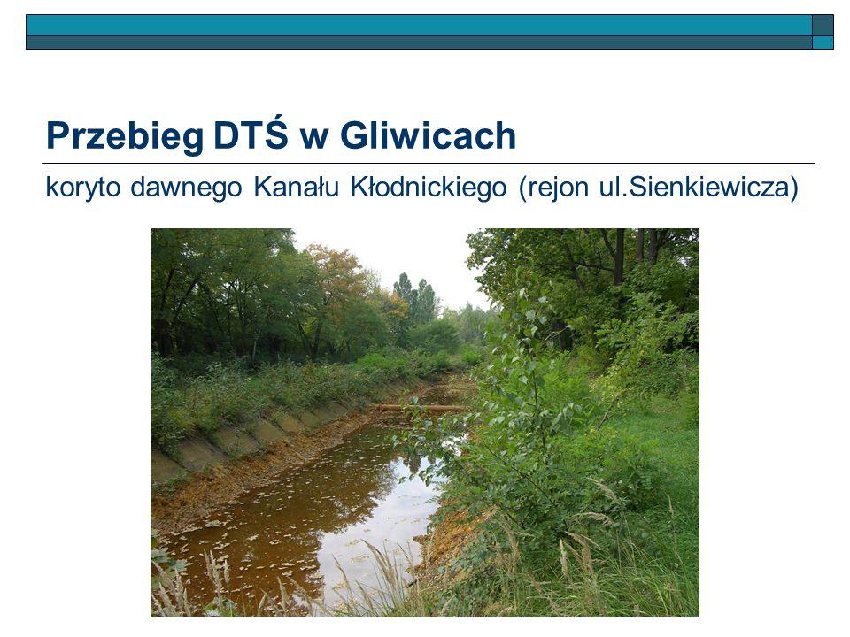Przebieg DTŚ w Gliwicach koryto dawnego Kanału Kłodnickiego (rejon ul