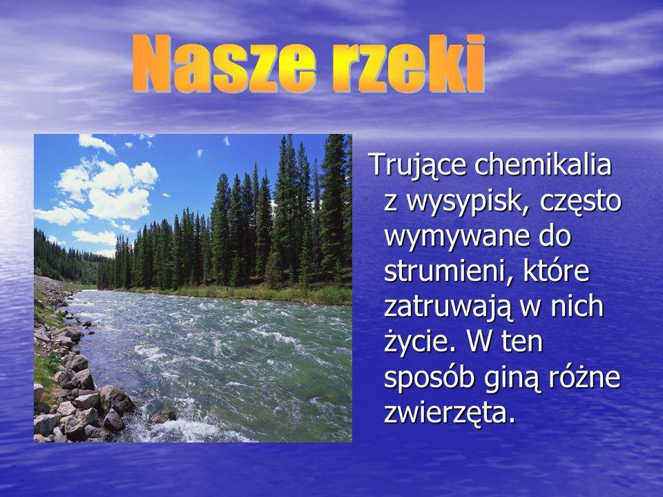 Nasze rzeki Trujące chemikalia z wysypisk, często wymywane do strumieni, które zatruwają w nich życie.
