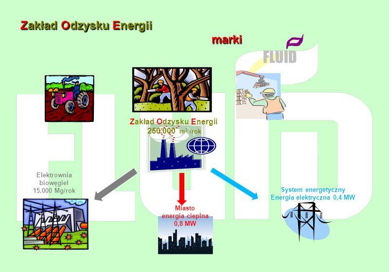 Elektrownia biowęgiel 15.000 Mg/rok Energia elektryczna 0,4 MW