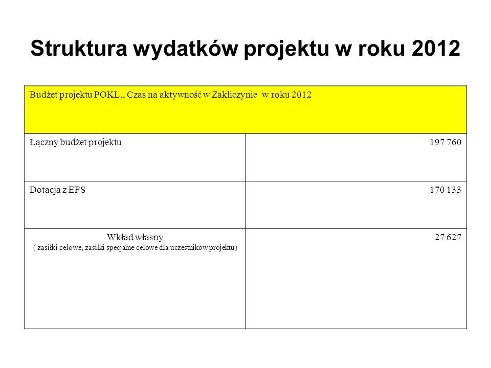Struktura wydatków projektu w roku 2012