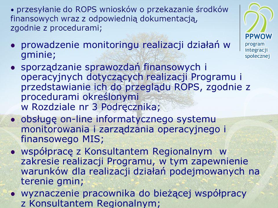 prowadzenie monitoringu realizacji działań w gminie;