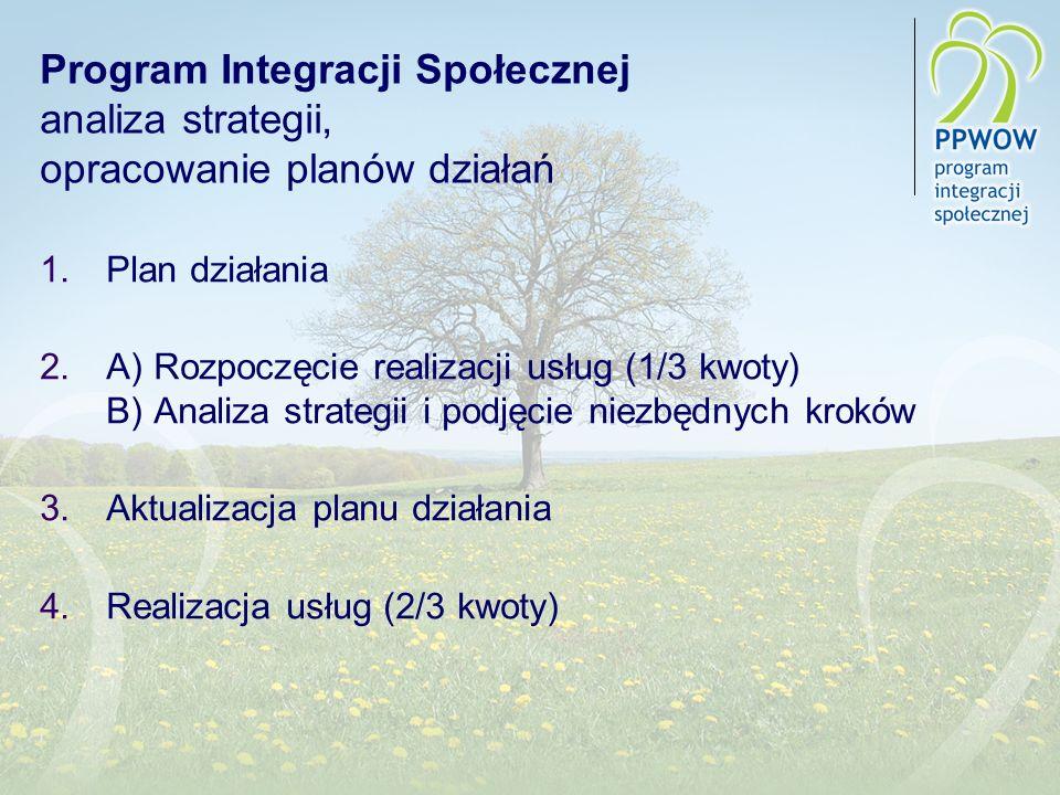 Program Integracji Społecznej analiza strategii, opracowanie planów działań