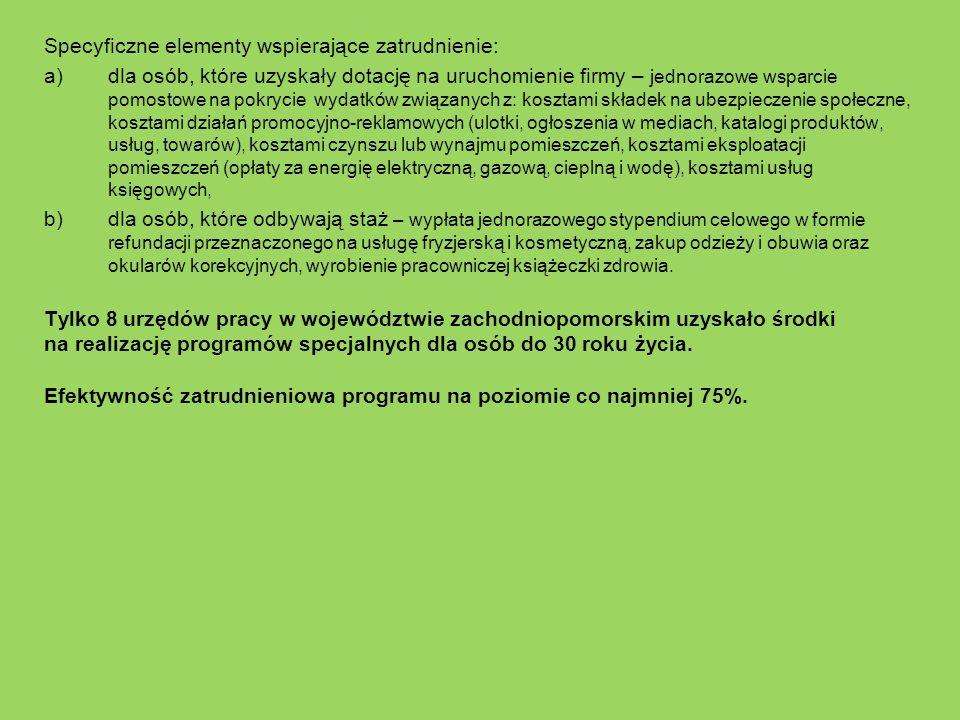Specyficzne elementy wspierające zatrudnienie:
