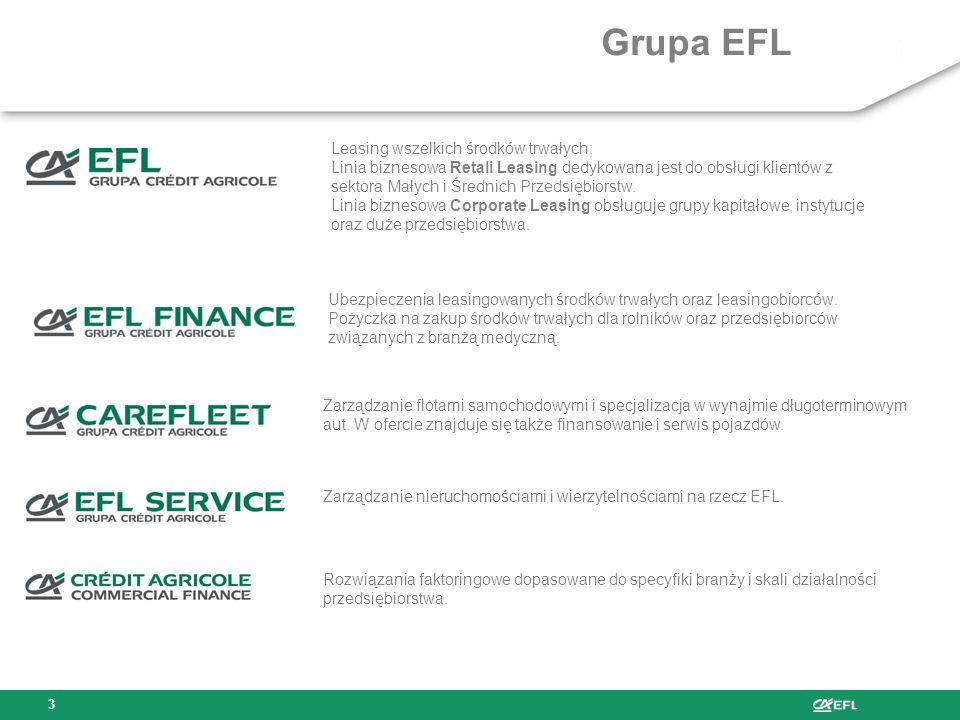 Grupa EFL Leasing wszelkich środków trwałych;