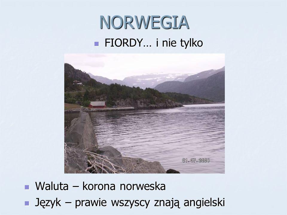 NORWEGIA FIORDY… i nie tylko Waluta – korona norweska