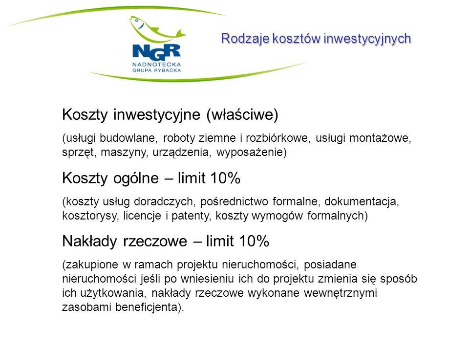 Koszty inwestycyjne (właściwe)