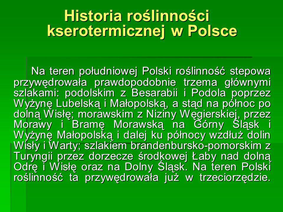 Historia roślinności kserotermicznej w Polsce