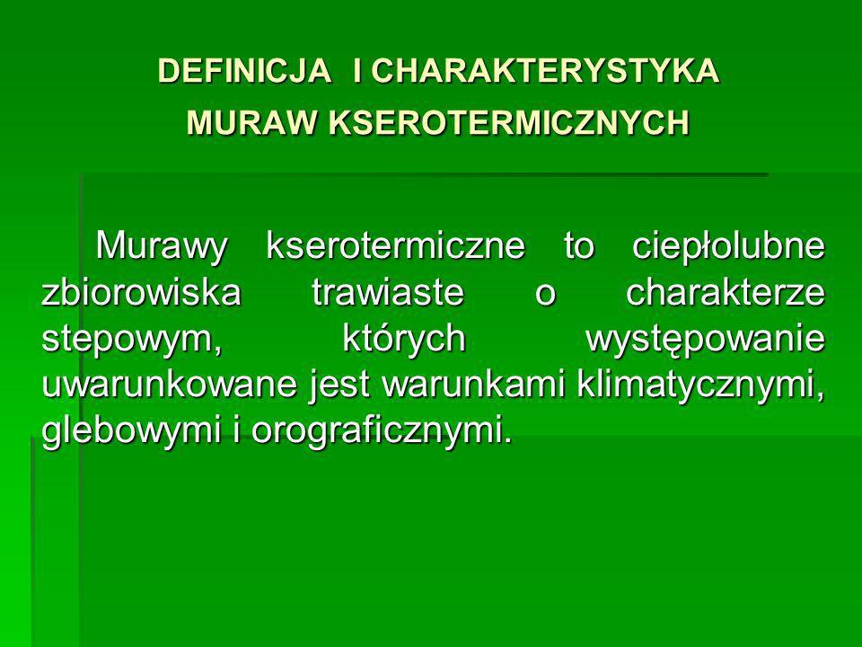 DEFINICJA I CHARAKTERYSTYKA MURAW KSEROTERMICZNYCH