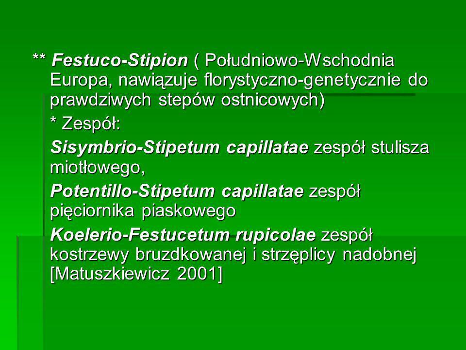 ** Festuco-Stipion ( Południowo-Wschodnia Europa, nawiązuje florystyczno-genetycznie do prawdziwych stepów ostnicowych)