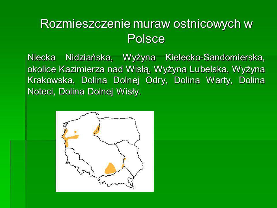 Rozmieszczenie muraw ostnicowych w Polsce
