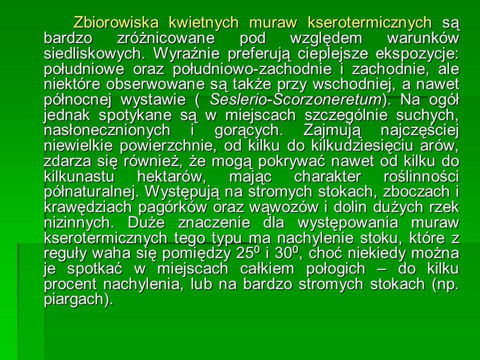Zbiorowiska kwietnych muraw kserotermicznych są bardzo zróżnicowane pod względem warunków siedliskowych.