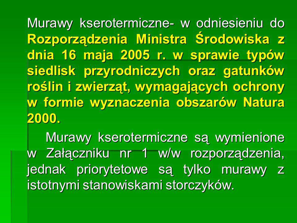 Murawy kserotermiczne- w odniesieniu do Rozporządzenia Ministra Środowiska z dnia 16 maja 2005 r. w sprawie typów siedlisk przyrodniczych oraz gatunków roślin i zwierząt, wymagających ochrony w formie wyznaczenia obszarów Natura 2000.