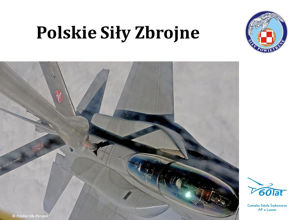 Polskie Siły Zbrojne © Polskie Siły Zbrojne