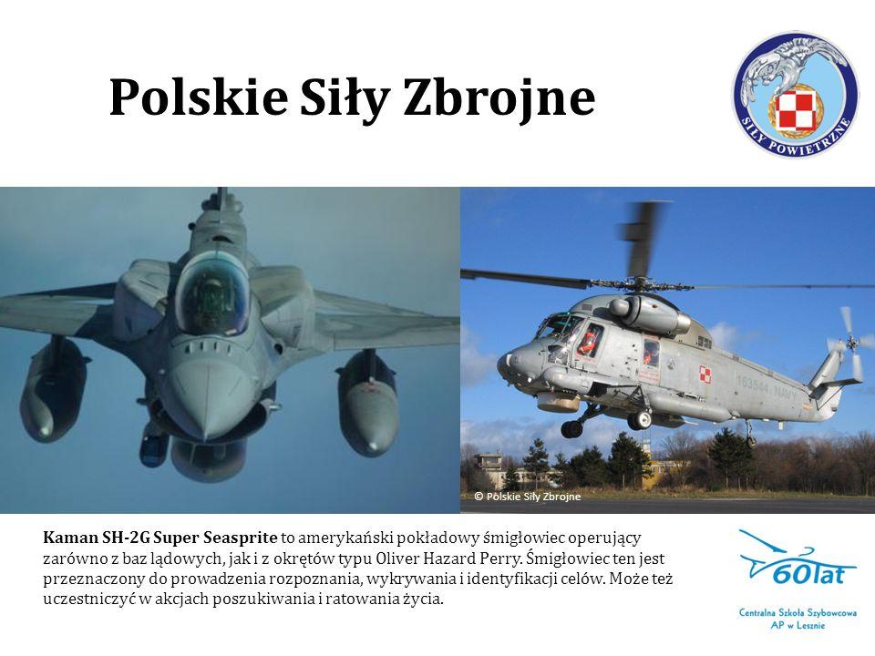Polskie Siły Zbrojne © Polskie Siły Zbrojne.