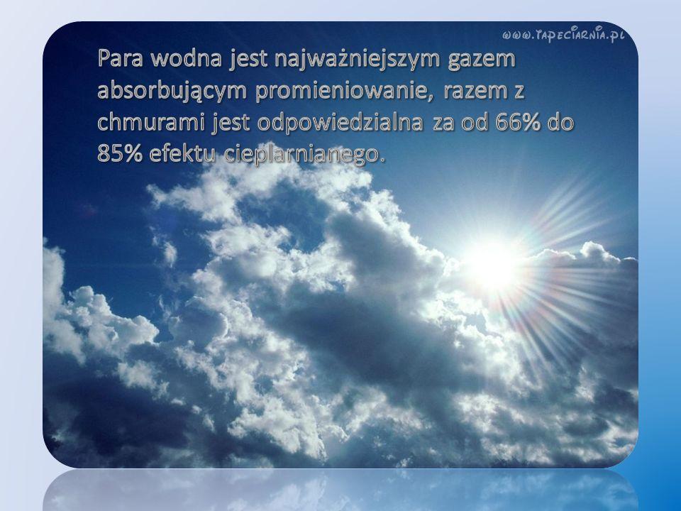 Para wodna jest najważniejszym gazem absorbującym promieniowanie, razem z chmurami jest odpowiedzialna za od 66% do 85% efektu cieplarnianego.