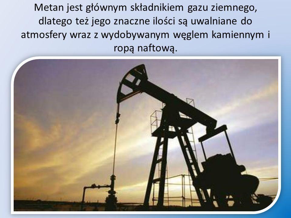Metan jest głównym składnikiem gazu ziemnego, dlatego też jego znaczne ilości są uwalniane do atmosfery wraz z wydobywanym węglem kamiennym i ropą naftową.