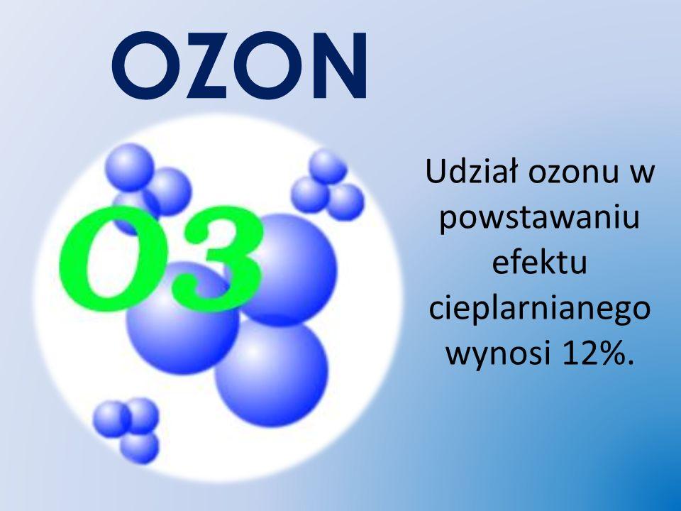 Udział ozonu w powstawaniu efektu cieplarnianego wynosi 12%.