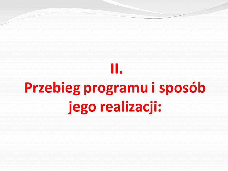 II. Przebieg programu i sposób jego realizacji: