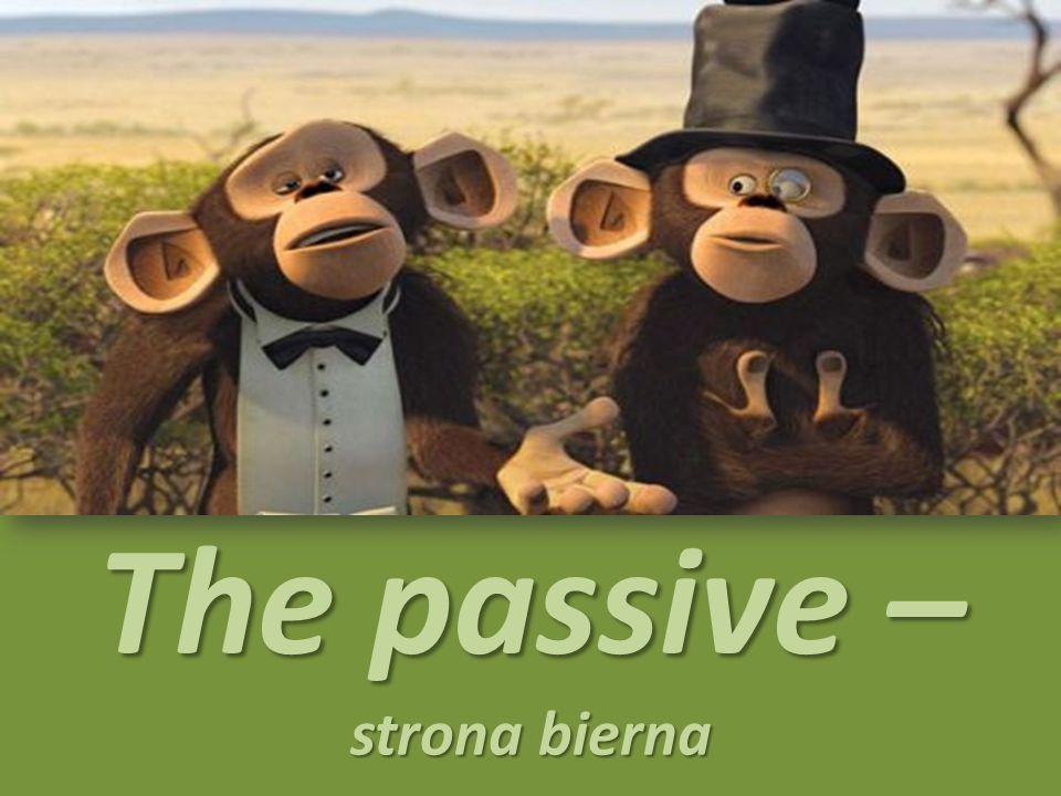 The passive – strona bierna