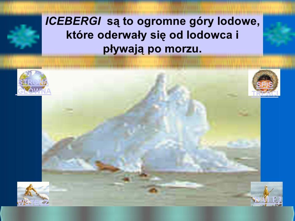 ICEBERGI są to ogromne góry lodowe, które oderwały się od lodowca i pływają po morzu.