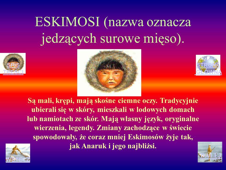 ESKIMOSI (nazwa oznacza jedzących surowe mięso).