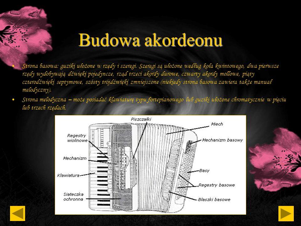 Budowa akordeonu