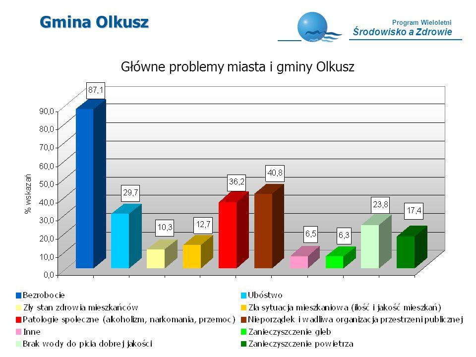Główne problemy miasta i gminy Olkusz