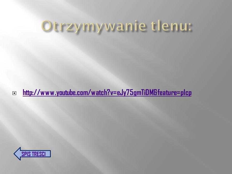 Otrzymywanie tlenu: http://www.youtube.com/watch v=eJy75gmTiDM&feature=plcp SPIS TRESCI
