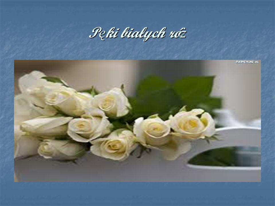 Pęki białych róż