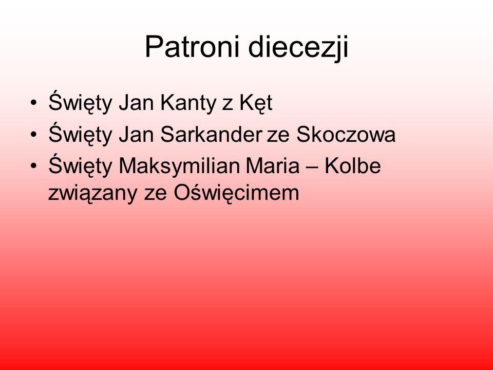 Patroni diecezji Święty Jan Kanty z Kęt