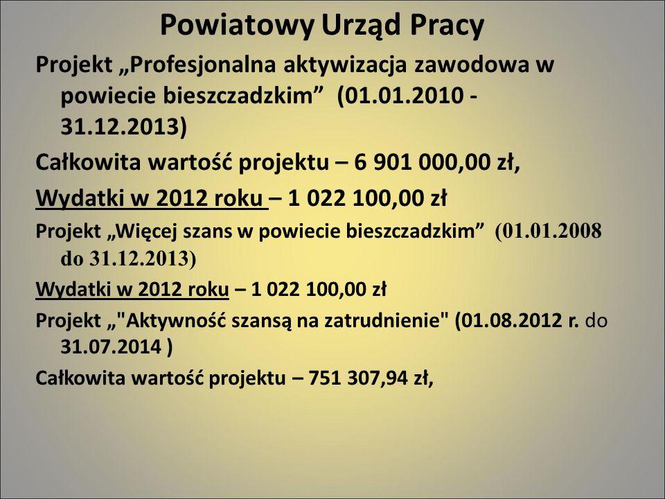 """Powiatowy Urząd Pracy Projekt """"Profesjonalna aktywizacja zawodowa w powiecie bieszczadzkim (01.01.2010 - 31.12.2013)"""