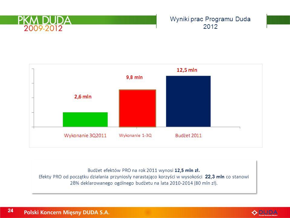 Wyniki prac Programu Duda 2012