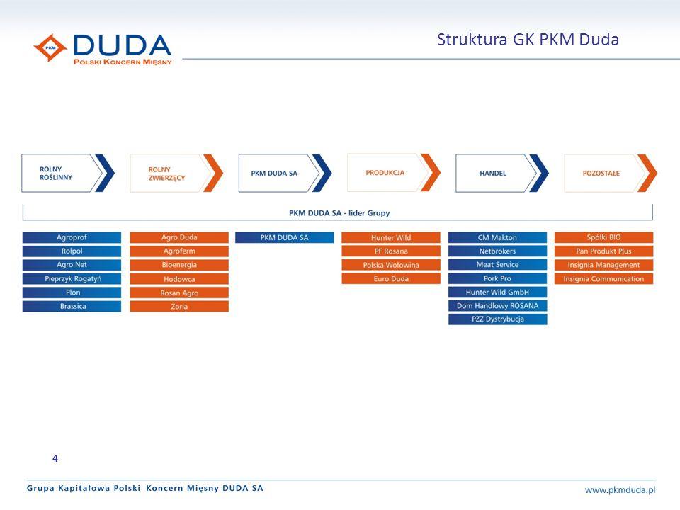 Struktura GK PKM Duda 4